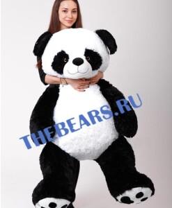 панда 150